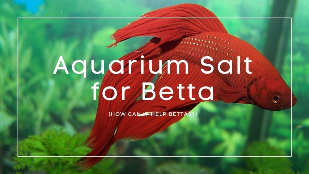 Aquarium Salt for Betta